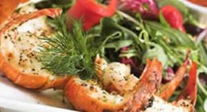 Conceptos básicos de la Dieta de Atkins