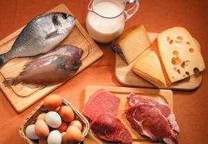 Conceptos básicos de la dieta alta en proteína