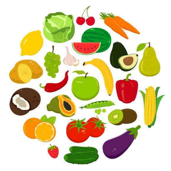 Diccionario de alimentos