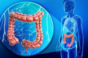 Aprende a cuidar tu colon y protegerlo de enfermedades