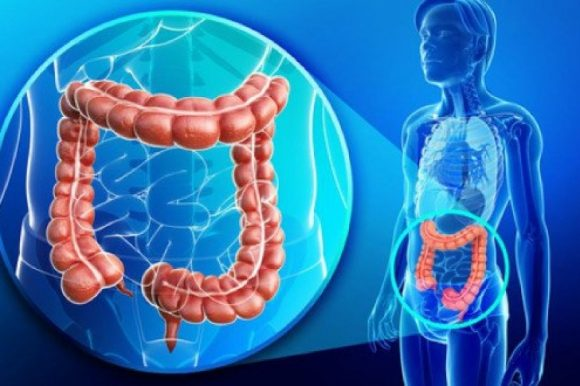 Aprende a cuidar tu colon