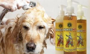 Cuida la piel y pelaje de tu mascota con activos 100%naturales