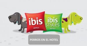 Hoteles ibis revolucionan la hotelería económica y abren sus puertas para las mascotas