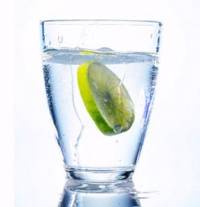 Baja 10 kilos con agua saborizada