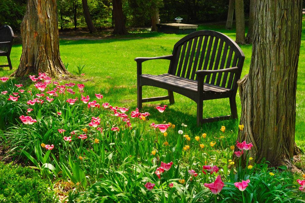 Cinco tips para cuidar a tu jard n en oto o belleza y alma - Casetas para el jardin ...