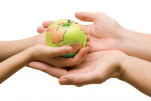 Alimentación sustentable y su impacto ambiental