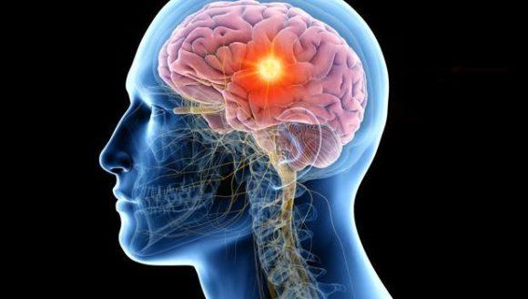 Cerebro y mente sana