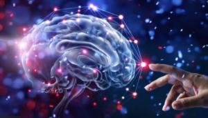 Ejercitarse ayuda a crear neuronas y mejorar la memoria