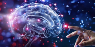 Actividad física ayuda a crear neuronas y ayuda a la memoria